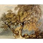 J. M. W. Turner A Great Tree