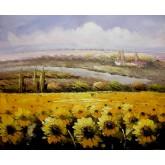 Yellow Flowers Field 2